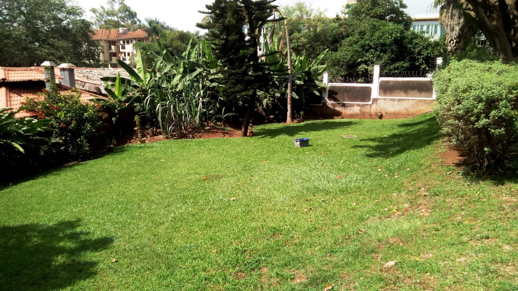 house in kololo (1)